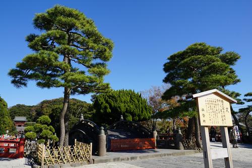 kamakura403b_DSC02048.JPG
