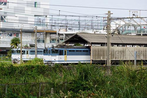 kanagawa102s_DSC08606.JPG