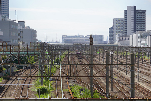 kanagawa113s_DSC08658.JPG
