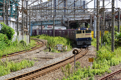 kanagawa205s_DSC08715.JPG