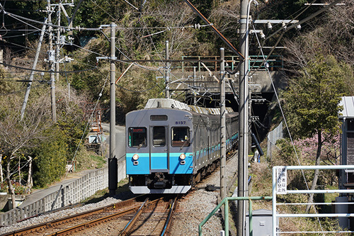 kawazu204s_DSC07977.JPG