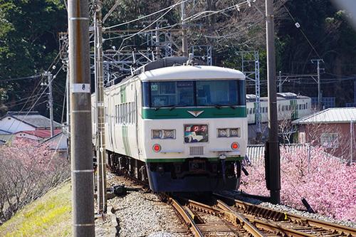 kawazu216s_DSC07966.JPG