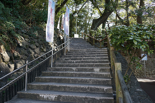 kouchi403s_DSC02419.JPG