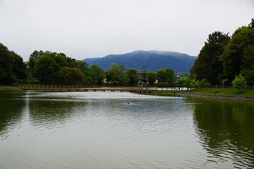 narakyoto901s_DSC06943.JPG