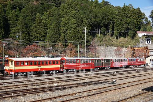 ooigawa305b_DSC01477.JPG