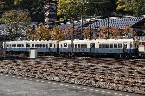 ooigawa306b_DSC01475.JPG