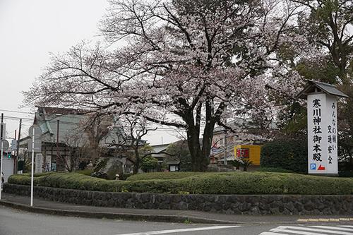 samukawa104s_DSC05537.JPG