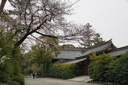 samukawa109s_DSC05558.JPG