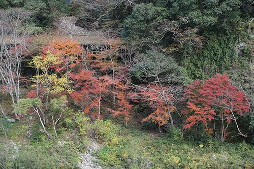 shikoku514_DSC03674.JPG