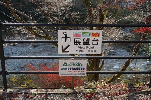 shikoku517_DSC03700.JPG