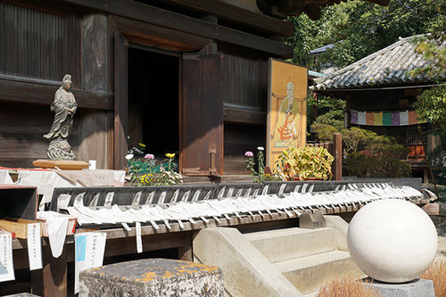 shikoku915s_DSC00669.JPG