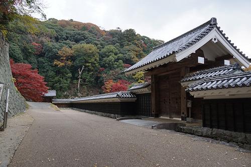shikokuB16s_DSC04292.JPG