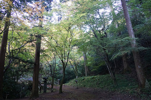 shikokuG02s_DSC01676.JPG
