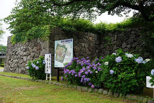 yamagata411s_DSC04183.JPG