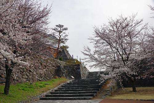yamanashi113b_DSC04621.jpg