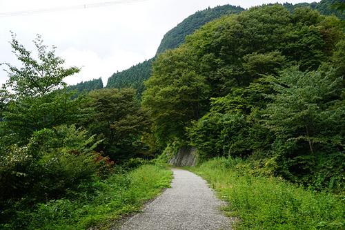 yokokawa211s_DSC01719.JPG